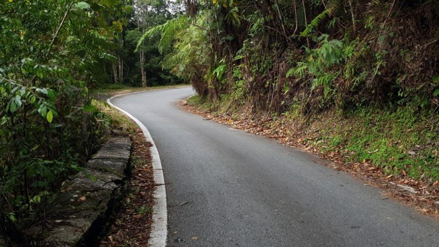 Fraiser hill
